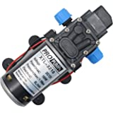 100W DC 12V High Pressure Micro Diaphragm Demand Water Pump for Car Washing Boat Cleaning Garden Watering Outdoor Mist Coolin
