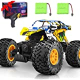 DOUBLE E Remote Control Car 4WD RC Car All Terrains Electric Toy Off Road Remote Control Monster Truck Vehicle Crawler with T