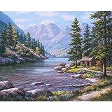LovetheFamily 数字油絵 数字キット塗り絵 手塗り DIY絵 デジタル油絵 川沿いの小屋 40x50cm ホーム オフィス装飾
