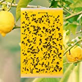 10 pcs Dual-Sided Yellow Sticky Traps for Flying Plant Insect Like Fungus Gnats, Whiteflies, Aphids, Leaf Miners, Thrips, Oth