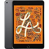 Apple iPad Mini WI-FI 64GB Gray (Renewed)