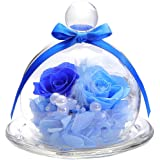 ティートサイト プリザーブドフラワー フラワーアレンジ ラッピング済み ガラスポット入り 2輪 (バラ ブルー)