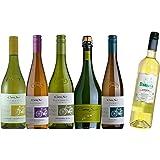 コノスル 人気の白ワイン5本と+1本 飲み比べセット [ 750ml×白6本 ]
