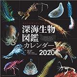 日本プロセス 深海生物図鑑 2020年 カレンダー CL-417