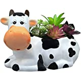 Sixdrop 9-Inch Cow Planter Pot for Small & Medium Size Plants, Decorative Indoor / Outdoor Garden Backyard Flower Ceramic Suc