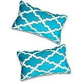 Vanteriam 2 Pack Indoor Outdoor Waterproof Lumbar Throw Pillow Cover ONLY, Decorative Rectangular Outdoor Pillow case with Pi