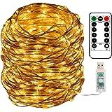 Areskey LEDイルミネーションライト フェアリーライト USB式電源供給 100球 10M 100 LED Fairy Lights ジュエリーライト 防水ワイヤーライト 8種類の点滅モード リモコン付き 調節可能な明るさ 屋外 室内 寝室の