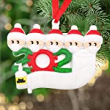 2020 Survived Family Ornament Xmas Tree Ornaments, Survivor Family Hanging Ornaments for Christmas Tree Home Decor, Christmas