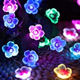 Cherry Blossom Flower String Lights 16 Colors, 40 LED 13 Feet USB and Battery Operated 3D Flowers Decorative Waterproof Outdo