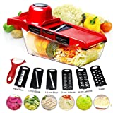 BYETOO Mandoline Slicer Vegetable Cutter Grater Chopper Julienne Slicer-6 Interchangeable Blades with Peeler,Hand Protector,F