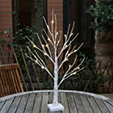 EAMBRITE 2FT 24LT Warm White LED Battery Operated Birch Tree Light Tabletop Tree light Jewelry Holder Decor for Home Party We