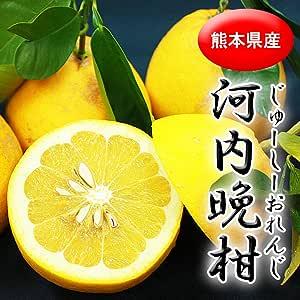 【 熊本県産 】 河内晩柑 ジューシーオレンジ 秀品 (2L~3L) ジューシーな果肉に爽やかな香りの柑橘です。 (10kg(20玉~30玉))