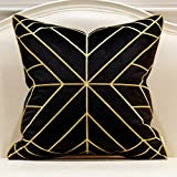 Avigers 20 x 20 Inches Black Gold Striped Cushion Cases Luxury European Throw Pillow Covers Decorative Pillows for Couch Livi