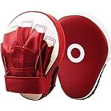パンチングミット LangRay ボクシング ミット 2個セット キックボクシング テコンドー ムエタイ 空手 格闘技 トレーニング用