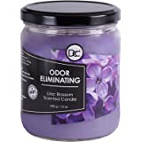 Odor Eliminating Highly Fragranced Candle - Neutralizes Pet, Smoke, Food, and Other Smells Quickly - Up to 80 Hour Burn time