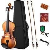 Eastar EVA-330 4/4 バイオリン 単板 ソリッド バイオリンセット 弓2本 初心者にも上級のバイオリン奏者にも (4/4)