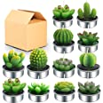 Outee Cactus Tealight Candles 12 Pack Handmade Delicate Succulent Cactus Candles Flameless Aromatherapy 12 Designs for Birthd