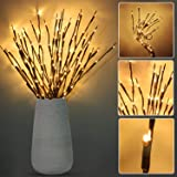 6 Pack LED Branch Lights Battery Powered Decorative Lights Willow Twig Lighted Branch for Home Decoration -30 Inch 20 LEDs (W