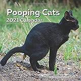 Pooping Cats Calendar 2021: Funny Cat Lover Wall Calendar Gag Joke Gift - Women, Men, Crazy Lady, Birthday, White Elephant Pa