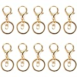 10 Pcs Swivel Lobster Clasps Keychains Metal Keyring Clips Key Holder Split Rings Keychain Snap Clip Hooks for Keys Craft DIY