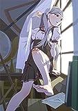 終物語 第二巻/そだちリドル  (完全生産限定版) [Blu-ray]