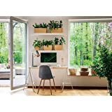 AIIKES 7x5FT Business Office Background Photography Background Interior Casement Window Work at Home Modern Fat Furniture Apa