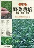 実践野菜栽培 葉菜・茎菜・豆類
