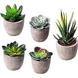 MoonLa 光触媒 観葉植物 フェイク グリーン 多肉 植物 造花 人工観葉植物 インテリア 室内用 プレゼント 5セット