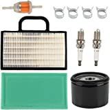 Butom 698754 273638 Air Filter with Oil Fuel Filter for Briggs & Stratton Intek Extended Life Series V-Twin 18-26 HP John Dee