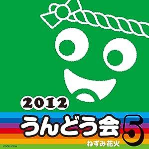 2012 うんどう会 5 ねずみ花火