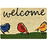 FANCOSAN 40x60 Entry Way Outdoor Doormat Non Slip Rubber Backing Funny Birds Welcome Door Mats House Hotel Kitchen Decorative