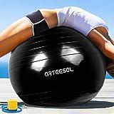 Arteesol yogaball バランスボール 分厚い 直径45cm/55cm/65cm/75cm 滑り止め 爆裂防ぎのヨガボール 足踏みタイプのポンプ付き 日本語説明書付
