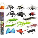 Safari Ltd Insects TOOB – Comes With 14 Toy Figurines – Including Caterpillar, Dragonfly, Centipede, Grasshopper, Ladybug, Sp