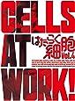 はたらく細胞 4(完全生産限定版) [Blu-ray]