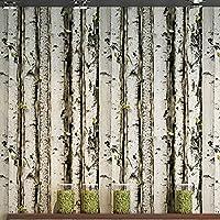 Akea Birch Tree Forest壁紙ロール、フォレストトランクとグリーンShoots壁アート壁画、リビングルーム、ベッドルーム、テレビ背景、アクセント壁