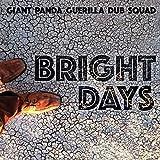 Bright Days [12 inch Analog]
