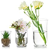 Glasseam 3Pcs/Set Vases for Flowers, Clear Hurricane Vase, Clear Vases for Decor, Hurricane Candle Holder for Home Table Deco
