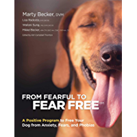 From Fearful to Fear Free: A Positive Program to Free Your D…