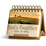 DaySpring God's Promises Day By Day DayBrightener Perpetual Calendar