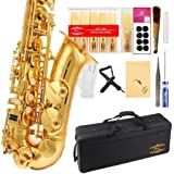 Glory Professional Alto Eb SAX Saxophone Gold Laquer Finish Alto Saxophone with 11reeds8 Pads CushionscasecarekitGold Color N
