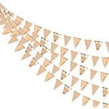 30 Ft Champagne Gold Double Sided Glitter Metallic Triangle Flag Bunting Pennant Banner for Wedding Birthday Holiday Festival