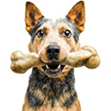 Pet Qwerks Zombie BarkBone, REAL BACON Flavor - Nylon Chew Toy for Aggressive Chewers, Tough Durable Extreme Power Chewer Bon