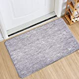 Indoor Doormat Front Door Mat Non Slip Rubber Backing Super Absorbent Mud and Snow Magic Inside Dirts Trapper Mats Entrance D