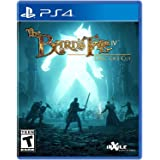 The Bard's Tale IV: Director's Cut (輸入版:北米) - PS4