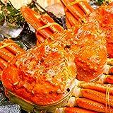 海夢 ズワイガニ 特大 厳選ビッグサイズ 贈答 ギフト 天然 ずわい蟹 姿 約1kg×1尾