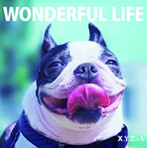 WONDERFUL LIFE(通常盤)