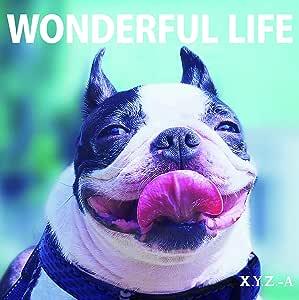 WONDERFUL LIFE(豪華盤)