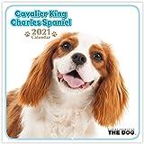 THE DOG 2021年 ミニカレンダー (キャバリア・キング・チャールズ・スパニエル)