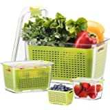 LUXEAR Fresh Container, 3PACK Produce Saver Container BPA Free Vegetable Storage Containers Fruit and Salad Partitioned Food