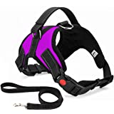 Musonic No Pull Dog Harness, Breathable Adjustable Comfort, Free Leash Included, for Small Medium Large Dog, Best for Trainin